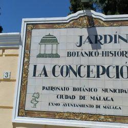 SALIDA COMPLEMENTARIA 2º CICLO. JARDÍN BOTÁNICO DE MÁLAGA